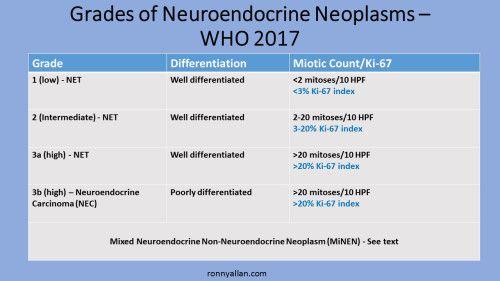 neuroendocrine cancer nec