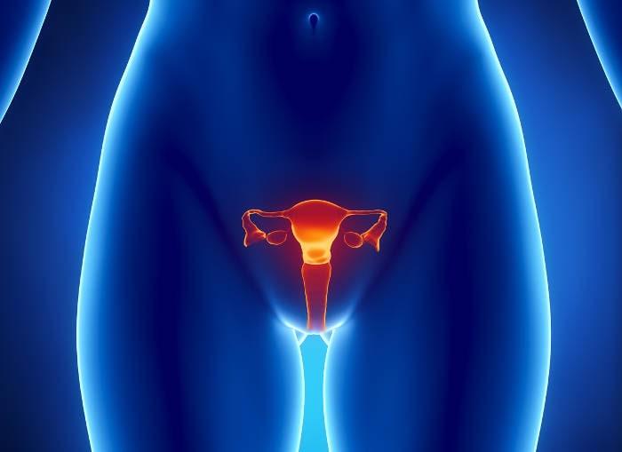 papilloma virus dopo isterectomia