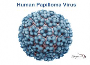 papiloma virus humano (hpv) cervical cancer screening after hpv vaccination