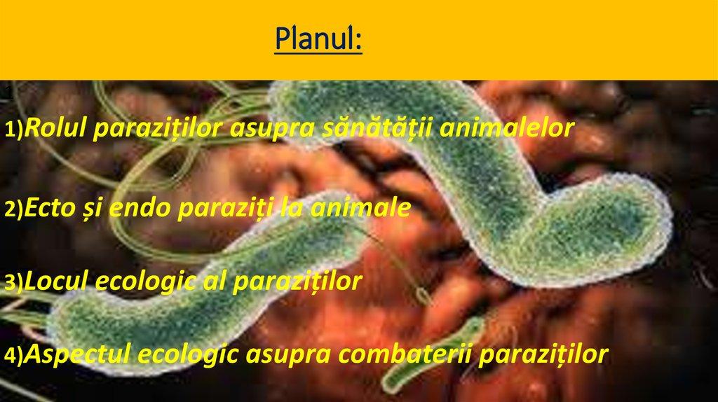 paraziti exemple)
