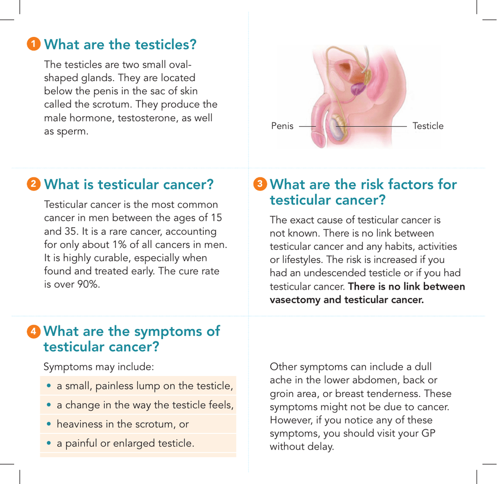 testicular cancer vasectomy)