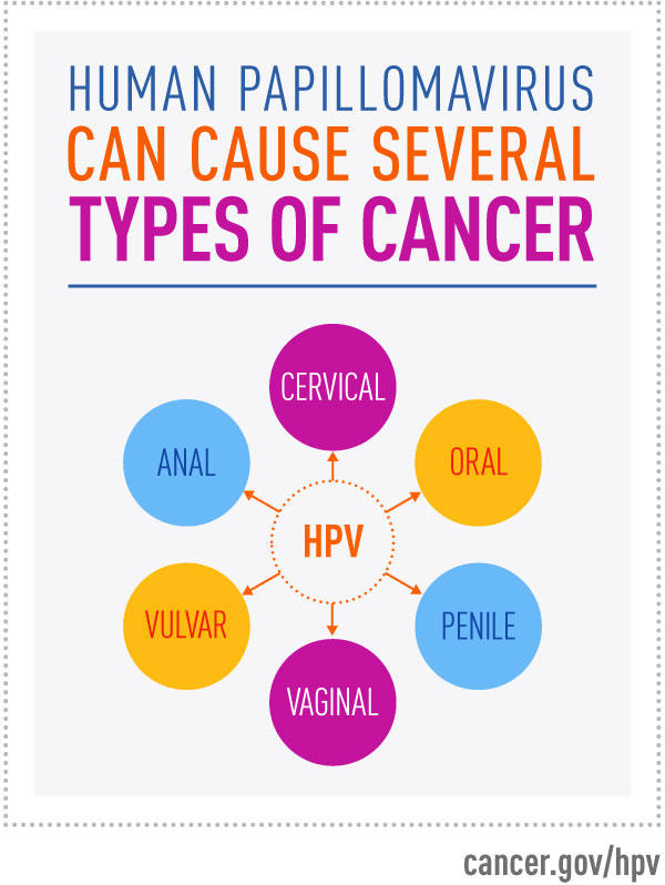 the cancer caused by the human papillomavirus (hpv) is in which group of cancers)