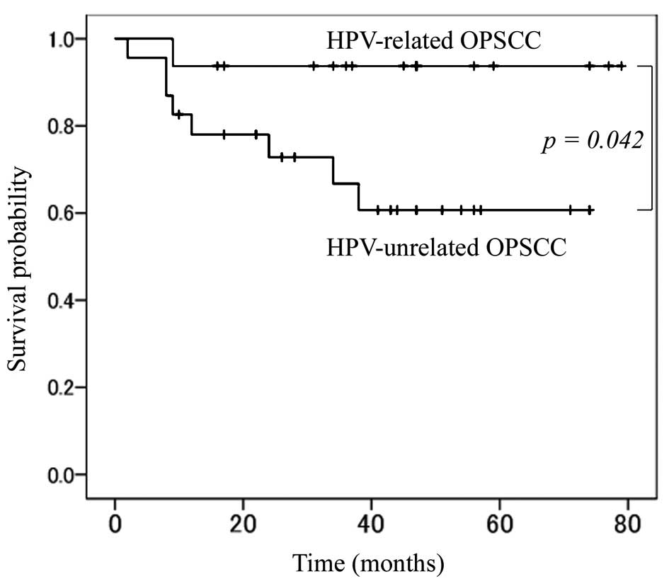 tonsil cancer hpv survival rates urethral papilloma carcinoma