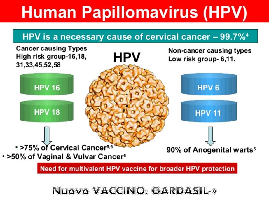vaccino papilloma virus costo campania)