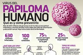 hpv virus and colon cancer cancer renal stadii
