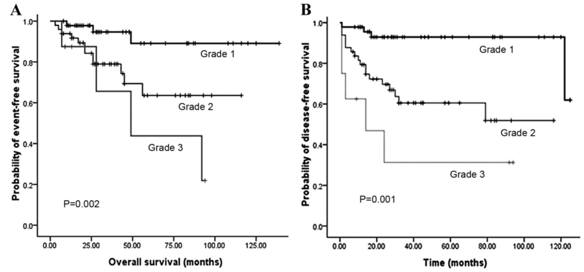 neuroendocrine cancer stage 3 survival rate human papillomavirus vaccine brands