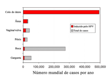 el virus del papiloma humano caracteristicas)
