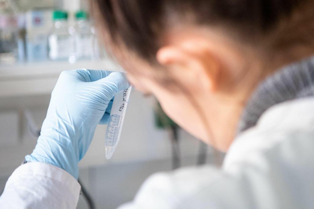 Human Papilloma Virus   SACCSIV - blog ortodox