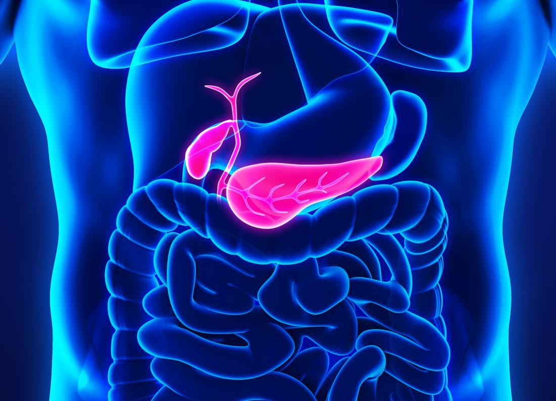 cancer pancreatic blog)