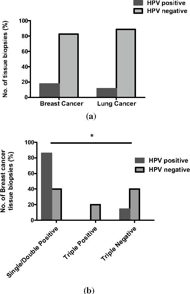 hpv 16 lung cancer)