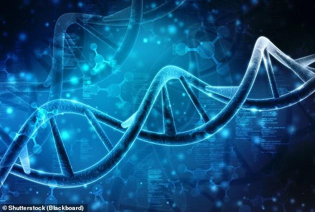 genetic cancer laetitia mendes