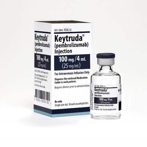 endometrial cancer keytruda)