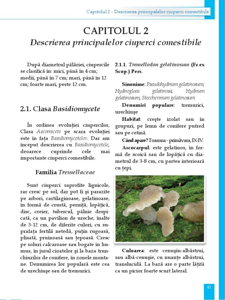 3 ciuperci comestibile)