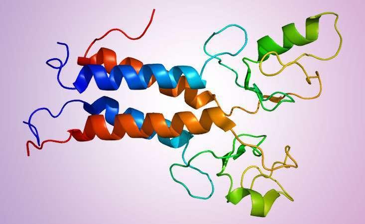 pancreatic cancer genetic or environmental)