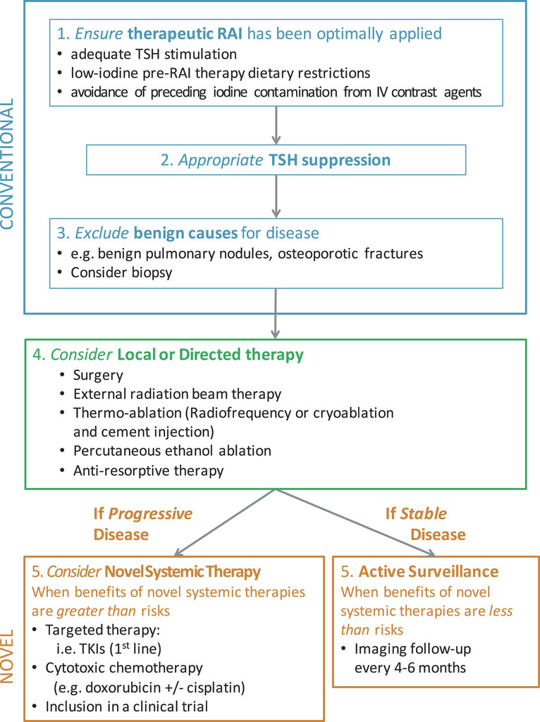 papillary thyroid cancer iodine therapy)