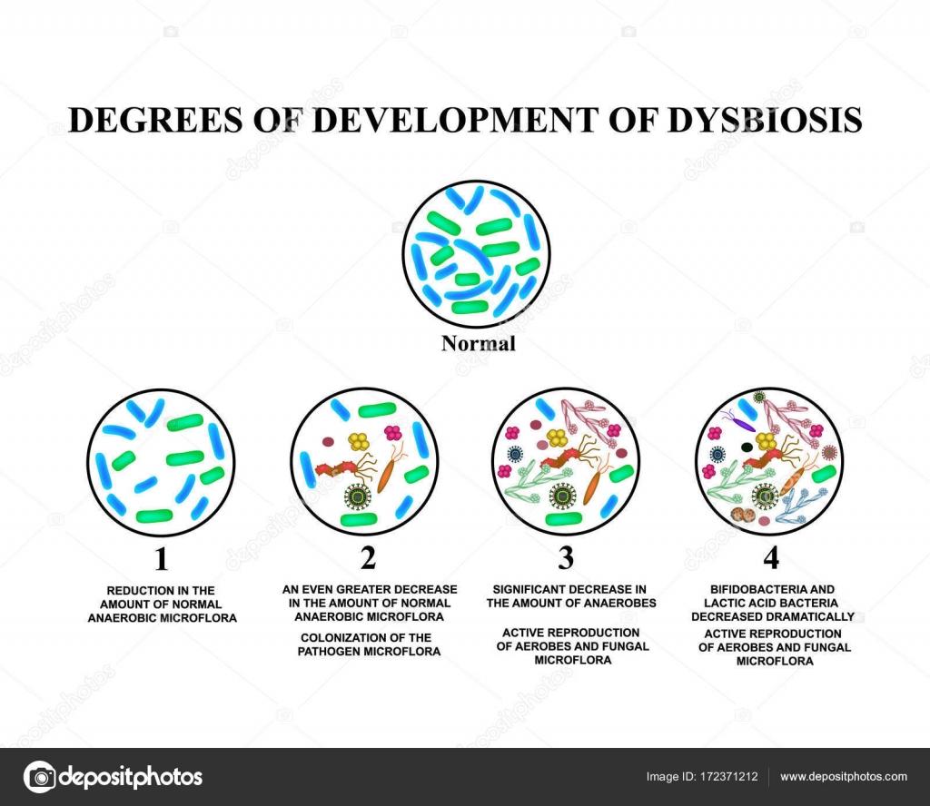 dysbiosis large intestine)