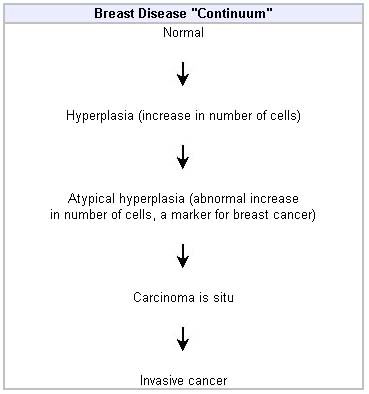breast cancer hormone results)