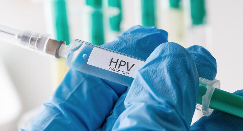 human papillomavirus hpv and pregnancy)