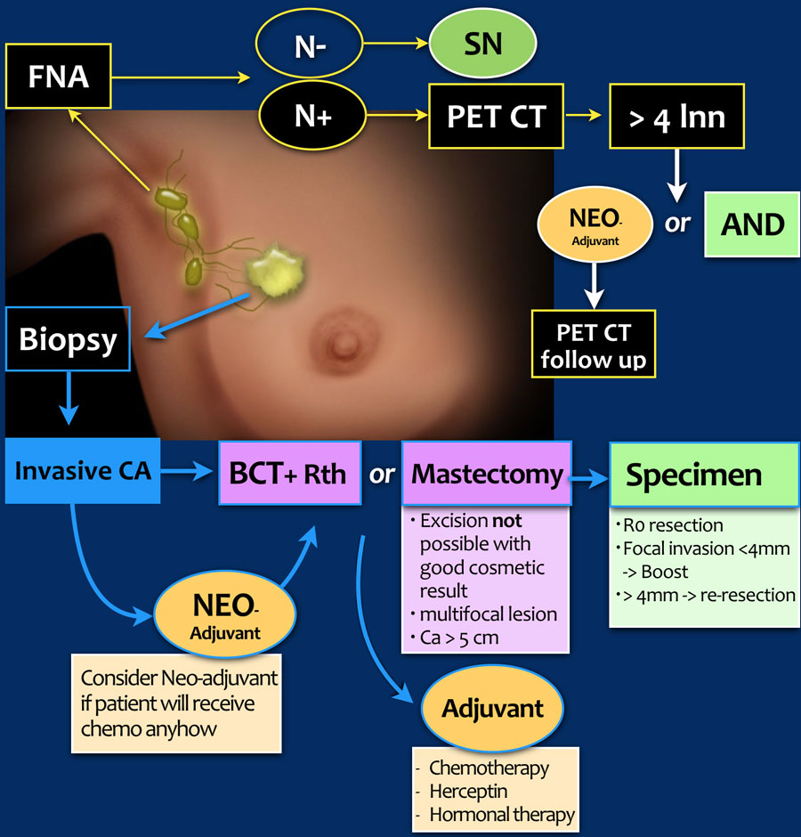 breast cancer hormonal diagnosis)