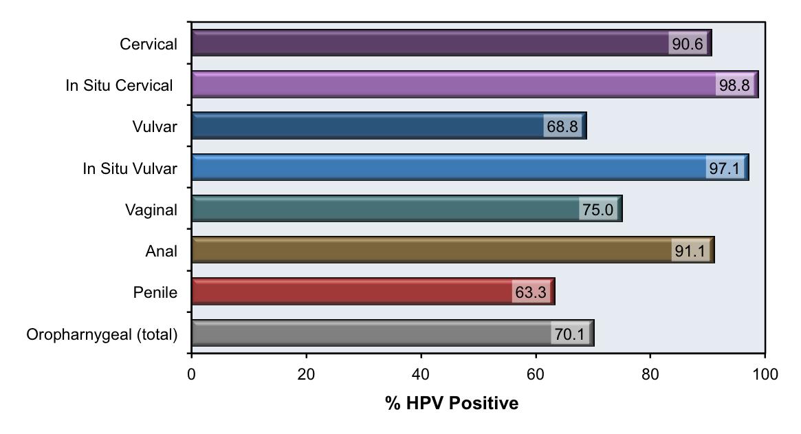 human papillomavirus pathogen papillomavirus vaccin fille
