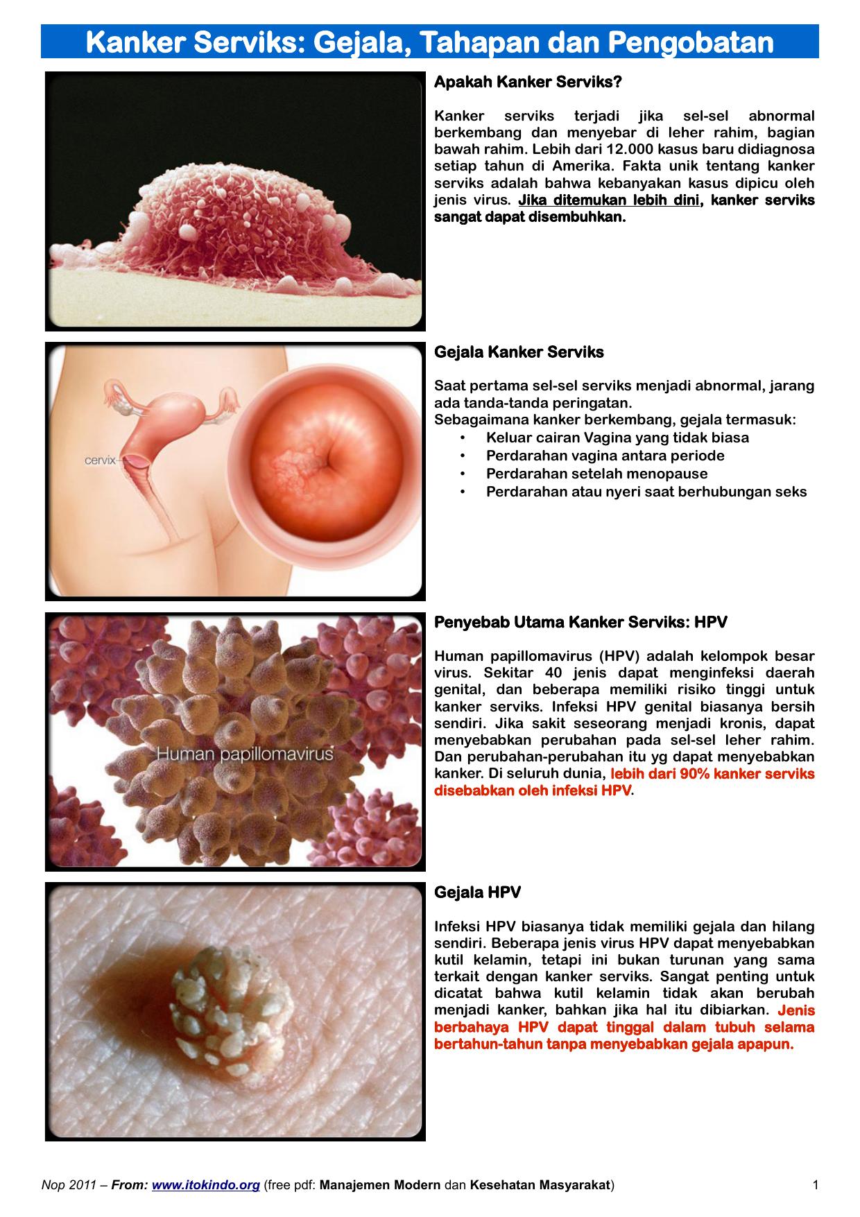 human papillomavirus adalah