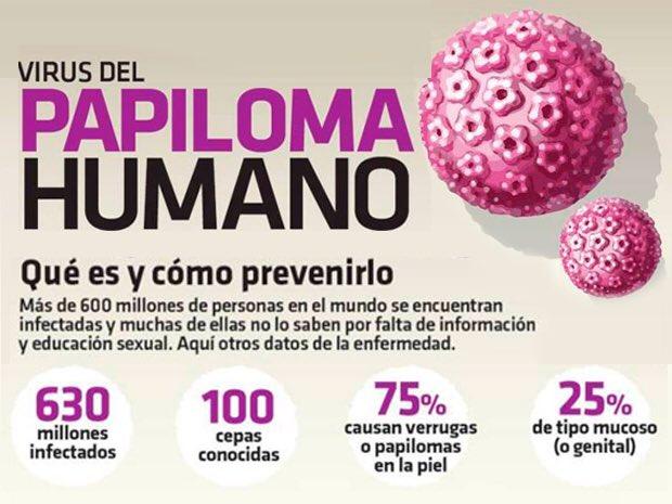 todo acerca del virus papiloma humano)