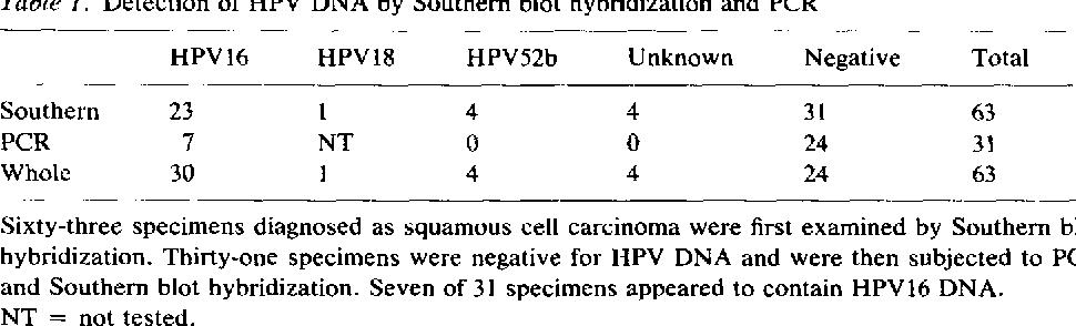 human papillomavirus pcr)
