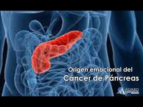 cancer de pancreas causas emocionales)