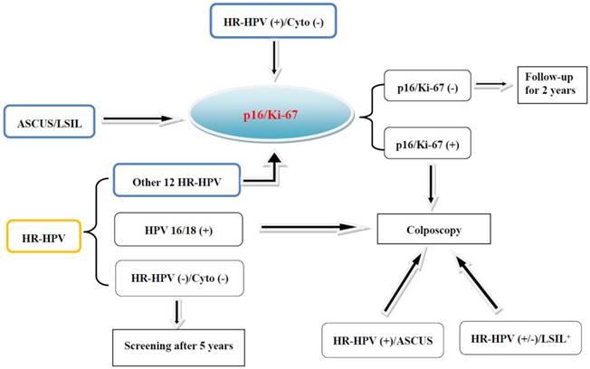 Bioclinica adn hpv pret