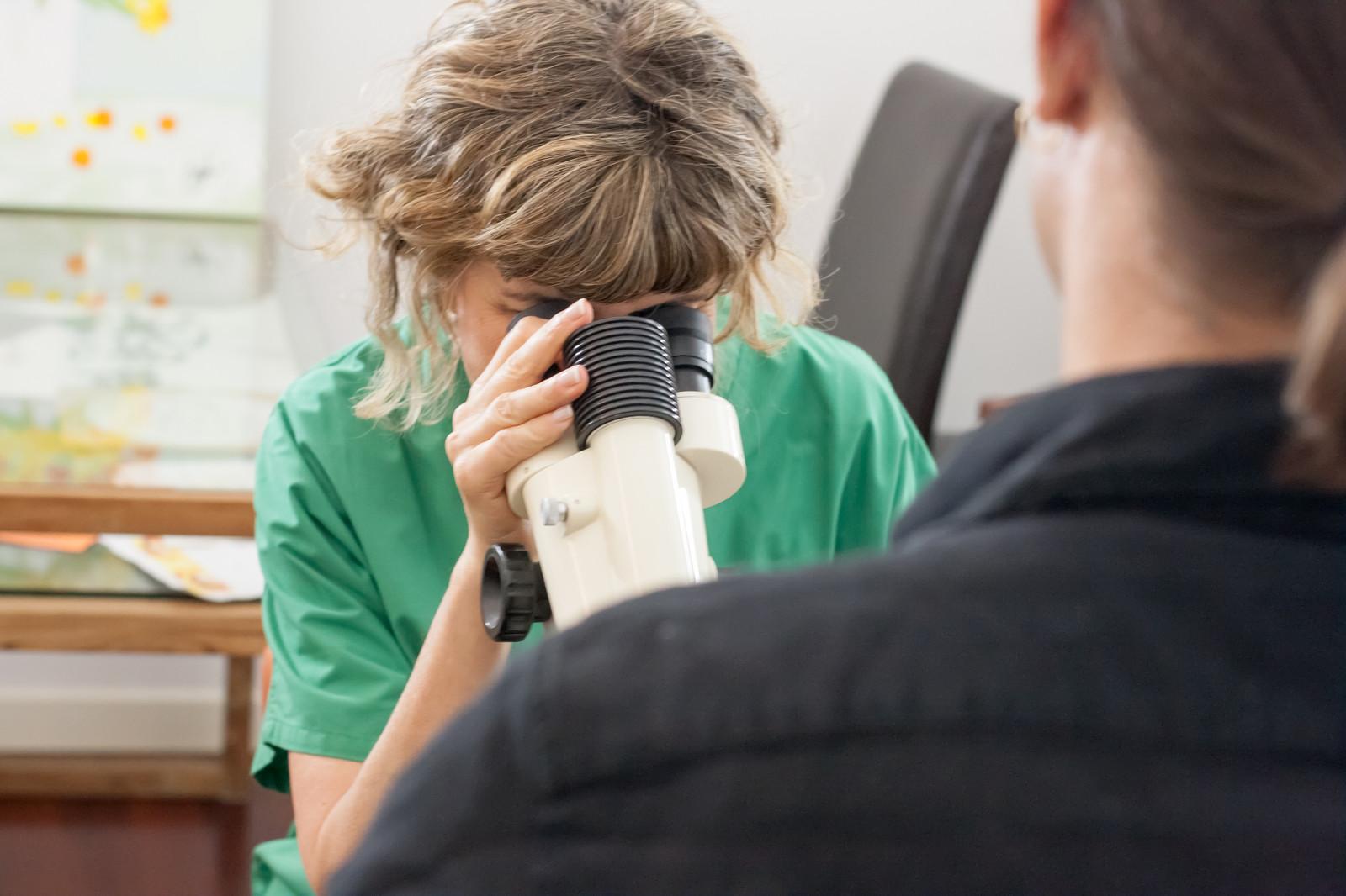 terapia papilloma virus nelluomo