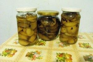 ciuperci la borcan jamila)