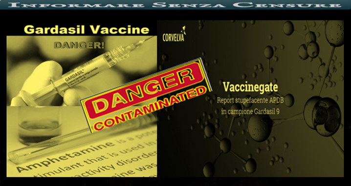 vaccino papilloma virus report