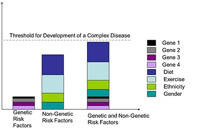cancer genetic or lifestyle