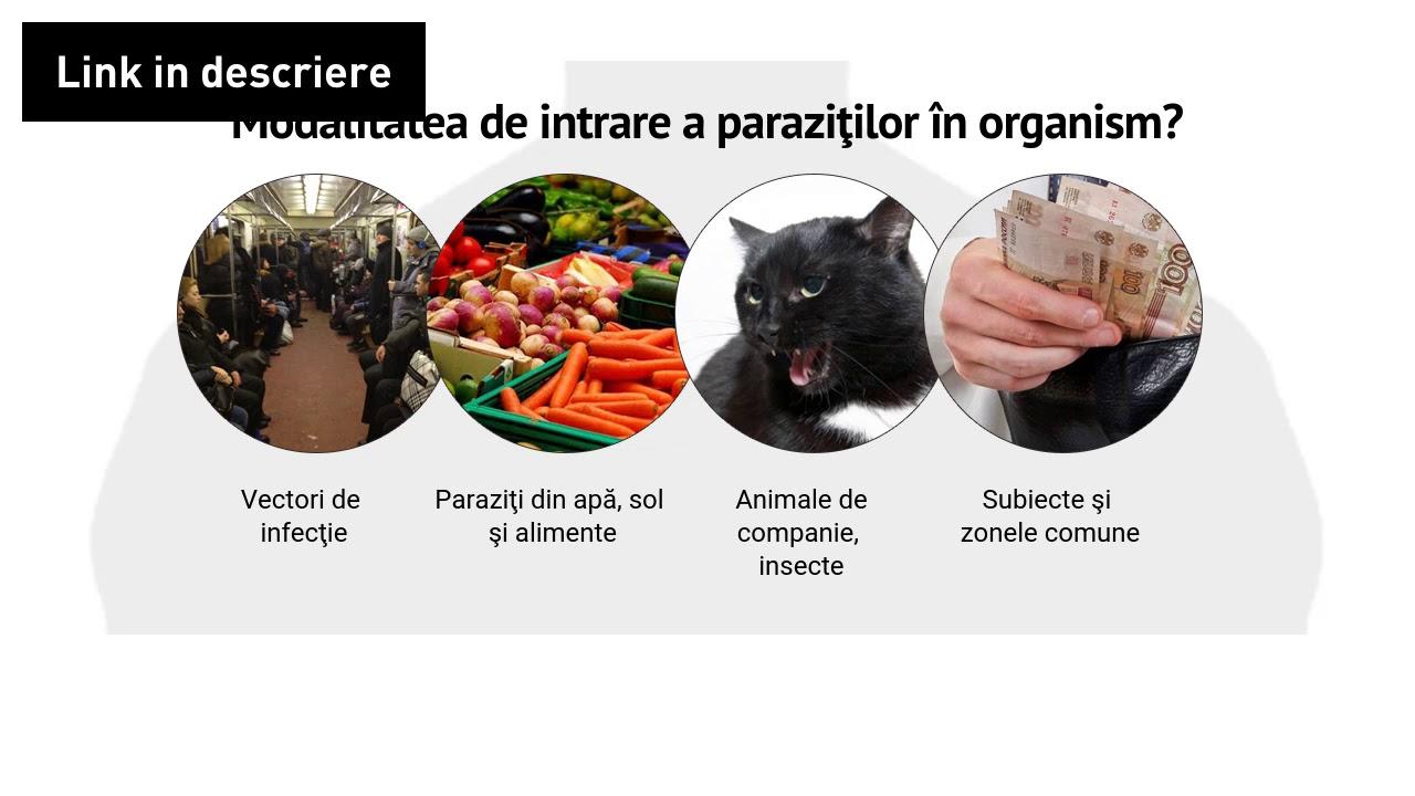 paraziti intestinali farmacia tei)