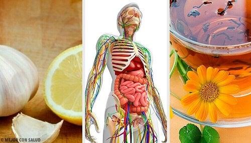 detoxifiere sistem limfatic)