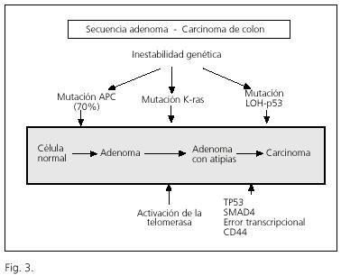 Prostatita helicobacter pylori