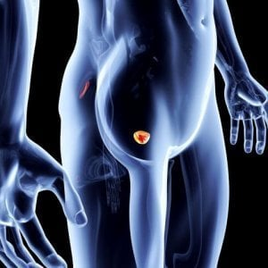 hpv bladder irritation)