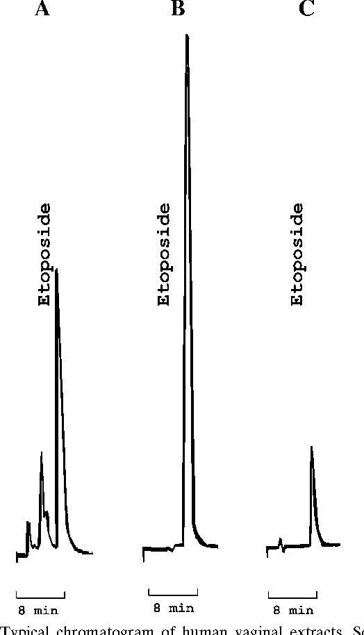 papillomavirus ovule