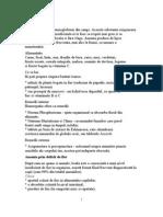 Anemia deficitului de vitamine - asspub.ro