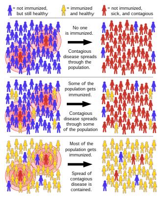human papillomavirus vaccine nedir