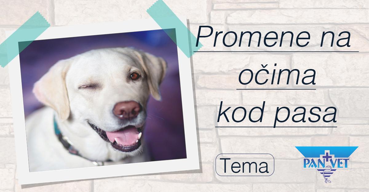 enciklopedija narodnih metoda leДЌenja.pdf