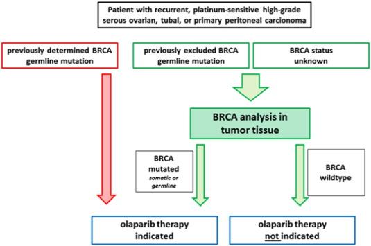 ovarian cancer new treatment)