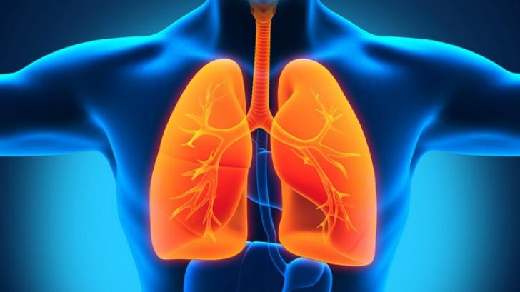 cancer de plamani primele simptome