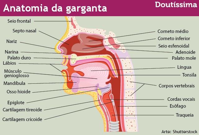 cancer orofaringe tratamento)