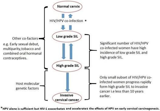 hpv impfung jungen risiken