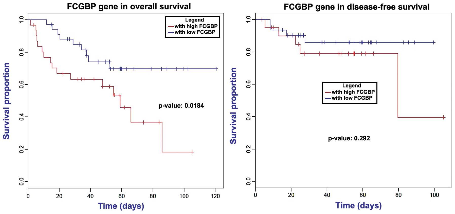 colon cancer metastatic prognosis)
