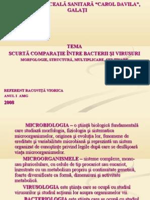 Bacteriile - referat