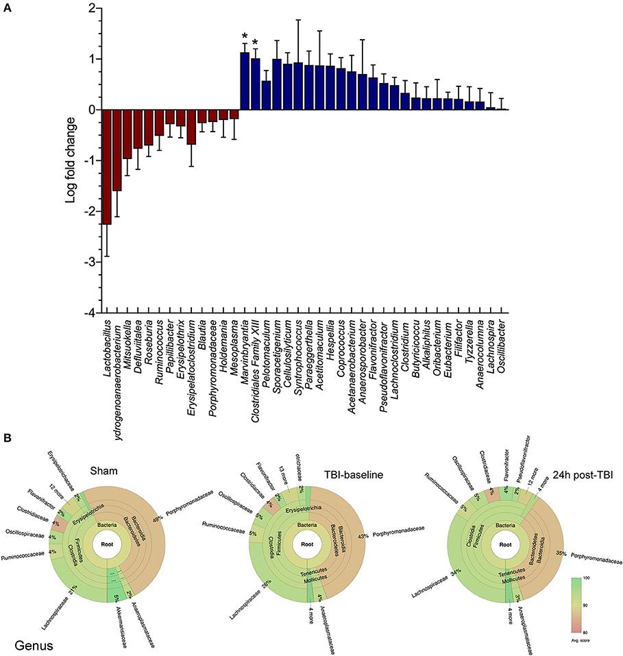 dysbiosis recovery time zunanji paraziti