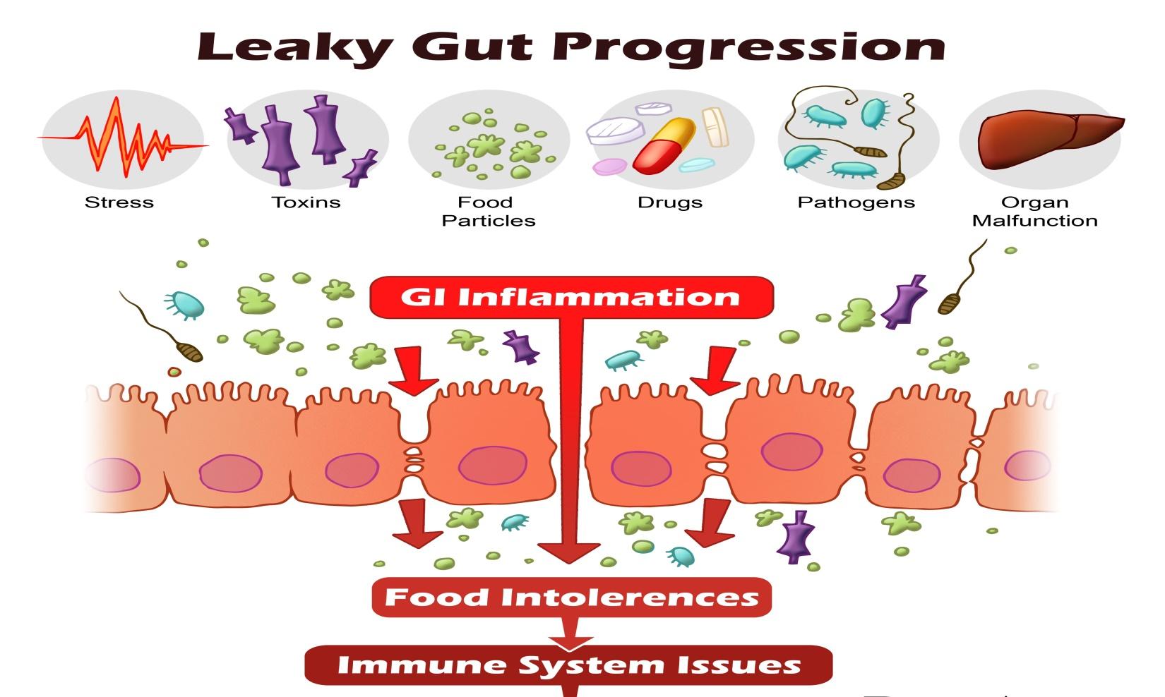 Microbiom in materii fecale - Detalii analiza | Bioclinica