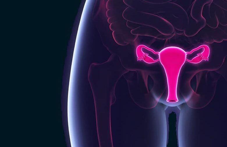 virus papiloma humano mujeres foro)